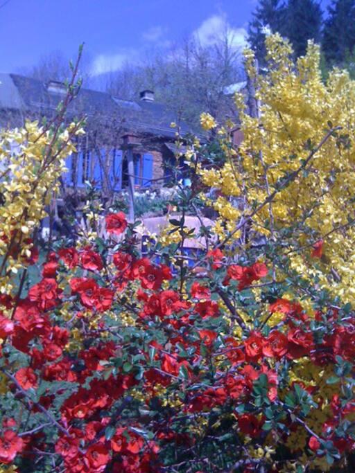 Le printemps à la Peyregude