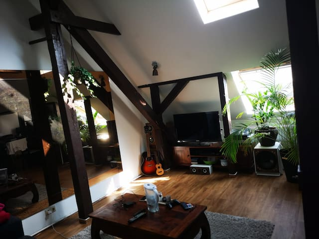 Cozy loft near to city center