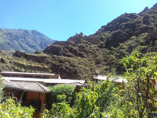 PRIVATE TWIN ROOM! - Ollantaytambo - House