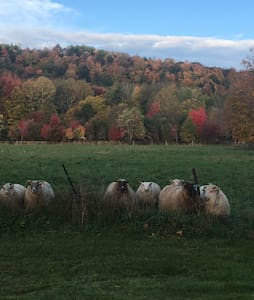 Weathertop - A Vermont Sheep Farm