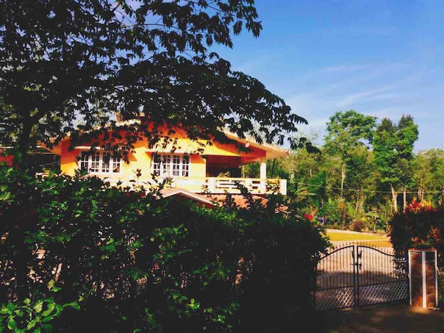Highlands Eco Home stay