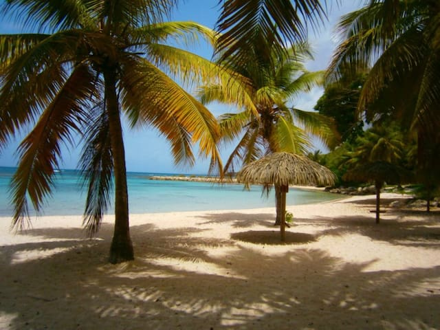 Elite Antilles - Studio piscine & plage privée - Saint François - Apartemen berlayanan