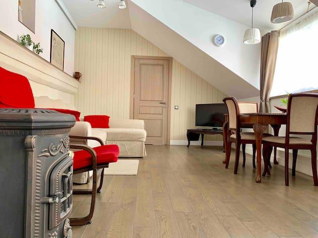 Very Vilnius Pilies street apartment