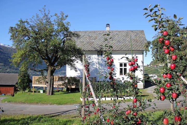 """Alvavoll gard """"løo"""" - Lofthus - Apartment"""