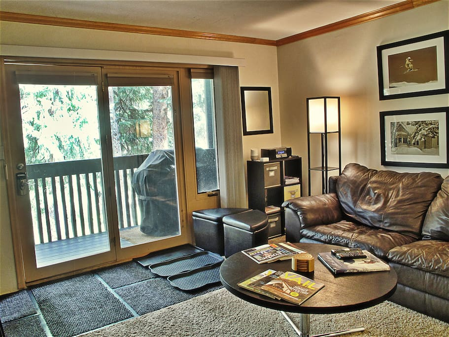 Google Home, Bluetooth Stereo and other amenities to relax by Gore Creek on leather couch