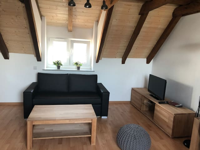 Fully furnished Apartment in Karlsfeld