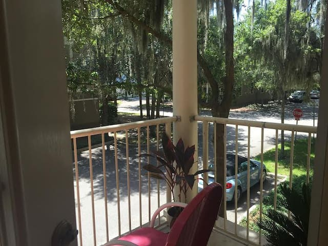 Quiet/Exquisite Apartment near UF - Gainesville - Huoneisto