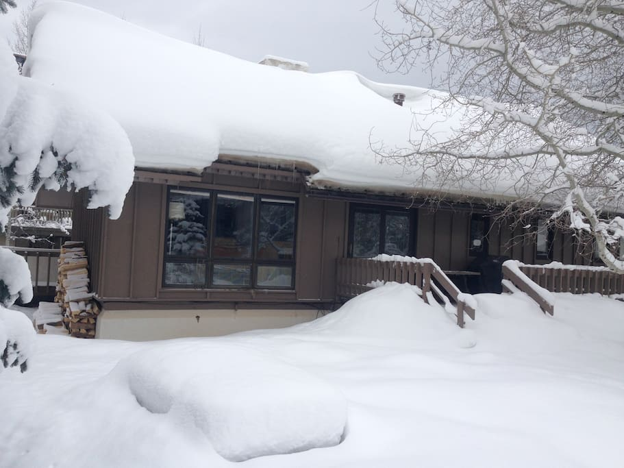 Chalet in winter -- side view
