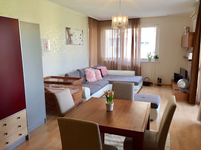 Cozy home@Obuda with balcony&garage - Budapešť - Byt