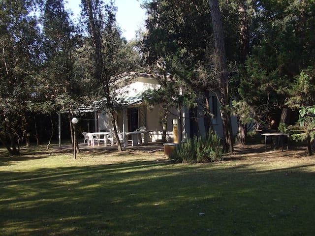 il campo: relax nella natura vicino al mare - Pietrasanta - House