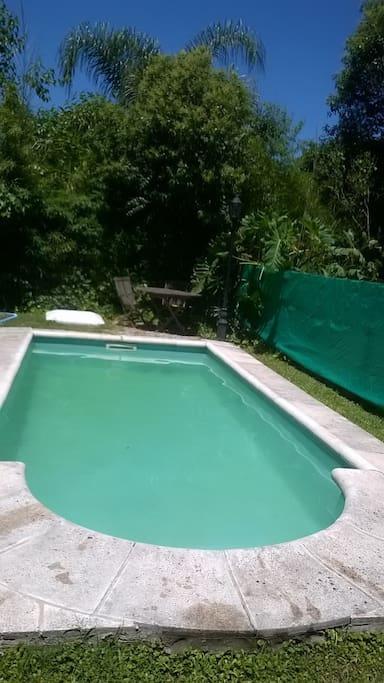 piscina (mucha privacidad)