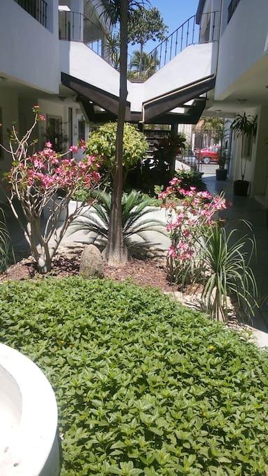 Jardin central