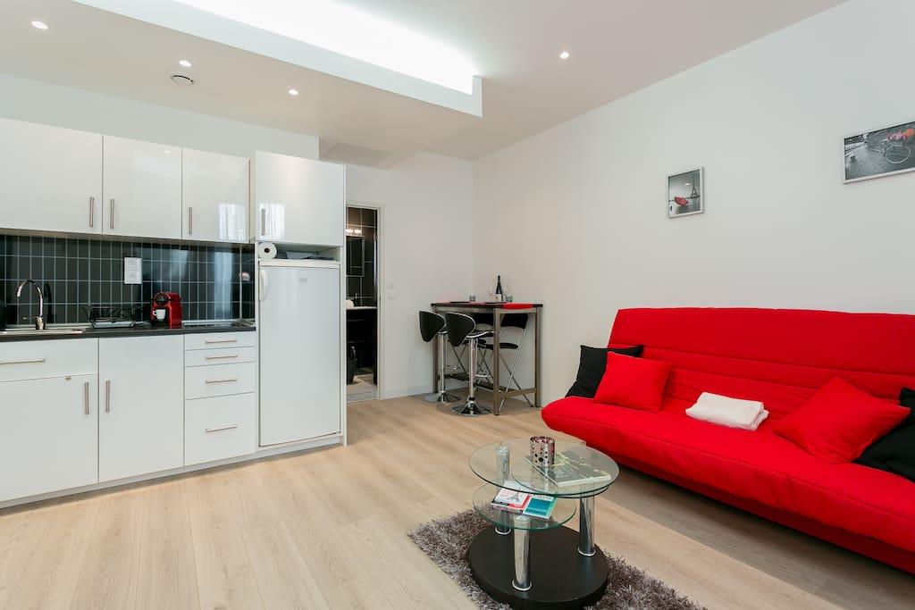studio proche gare montparnasse appartements louer paris le de france france. Black Bedroom Furniture Sets. Home Design Ideas