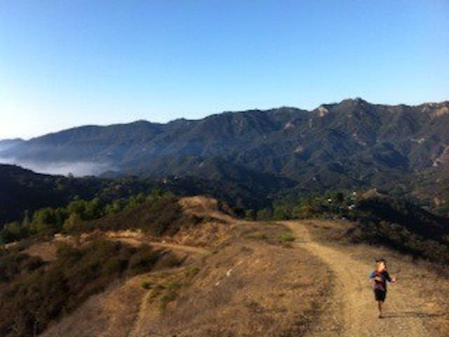 The hiking path
