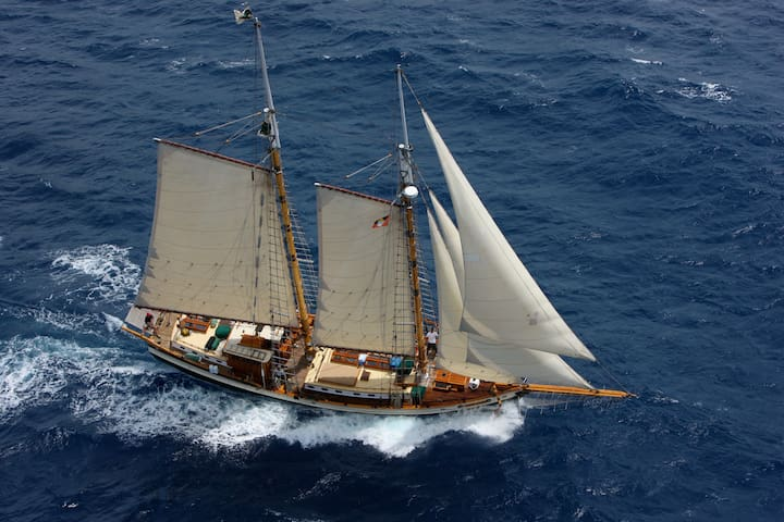 Luxurious Tall Ship in Newport Harbor