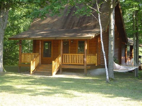 Log Cabin on Rifle River