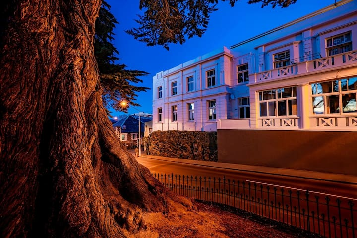 The Apartment is in the former RSA an iconic Dunedin heritage building. Burlington Street runs between the outer Octagon and Queens Gardens and is home to First Church. The Town Hall, Regent theatre, cafés and restaurants are all close by.
