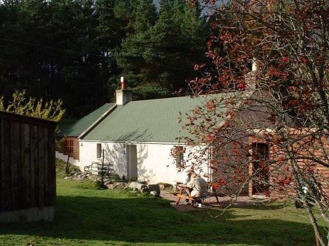 HOLMHEAD cosy hideaway cottage-2 acres of forest!