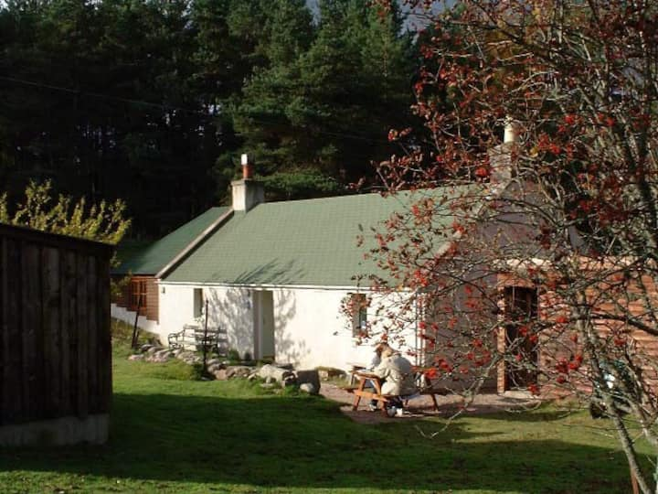 Cosy, hideaway cottage in 2 acres of forest!