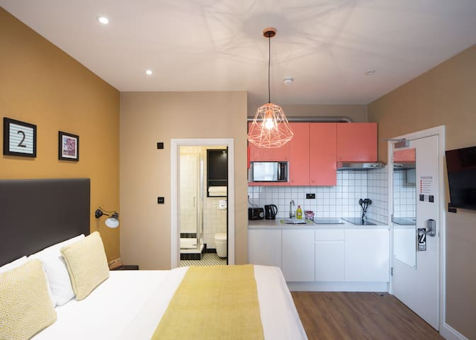 Regular Studio Apartment in Hammersmith