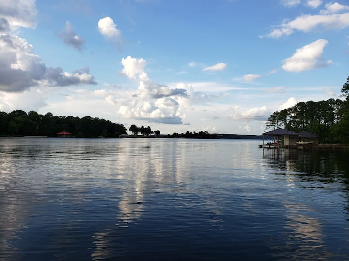 "Million Dollar View ""Entire Home Lake Palestine"""
