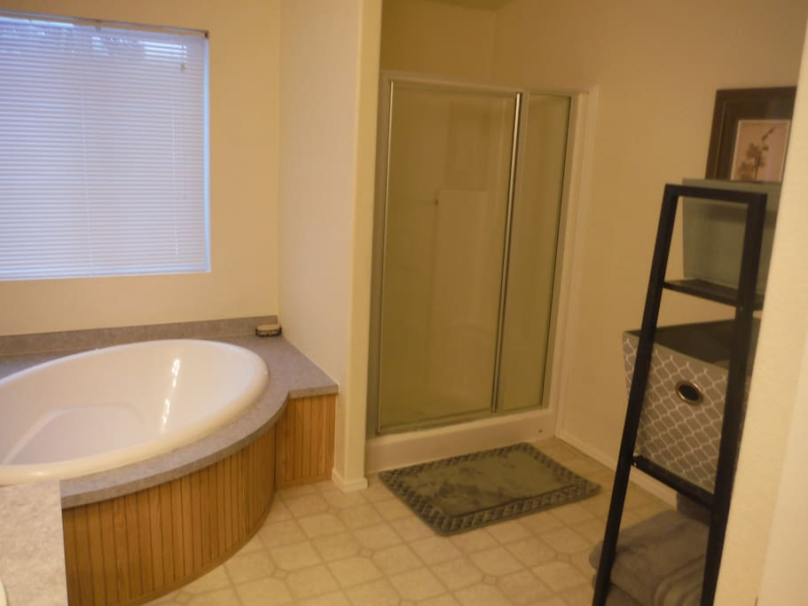 Master bathroom with garden tub and shower
