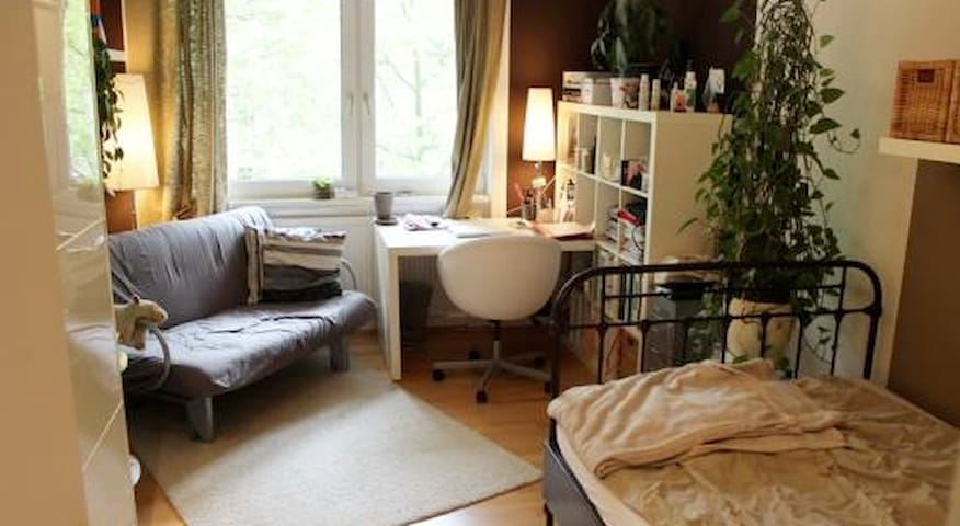 Beautiful Flat Share in Mainz