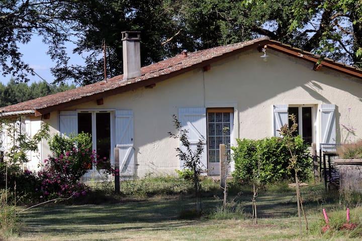 GITE AVEC PISCINE AU COEUR DE LA FORET - Pissos - Pondok alam