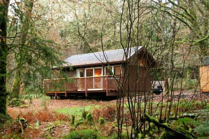 Cosy log cabin in the woods. - Dalavich - Chatka