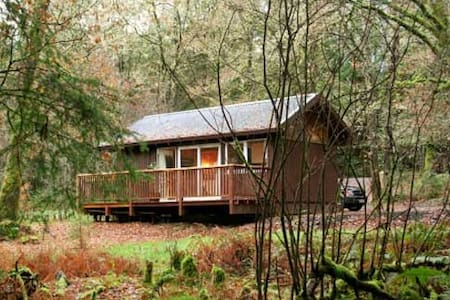 Cosy log cabin in the woods. - Dalavich