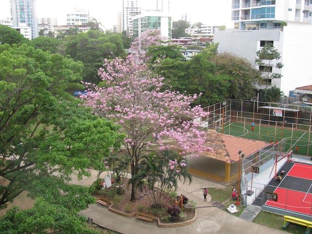 Gorgeus  apartment best  location in Panama