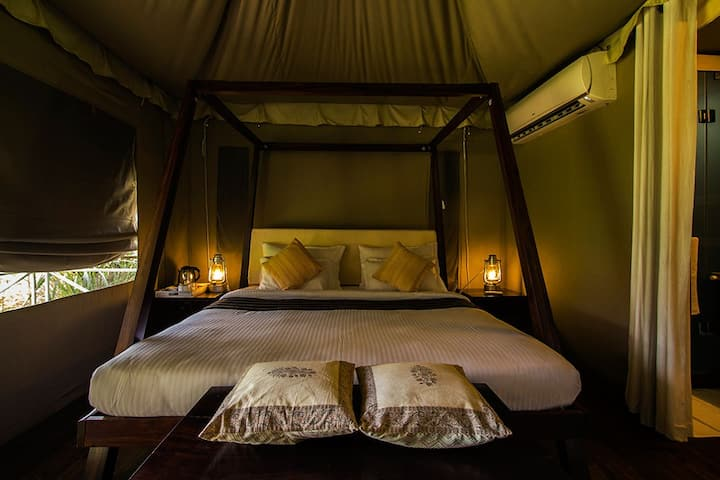 Private Luxury Tents inside Bandhavgarh Forest