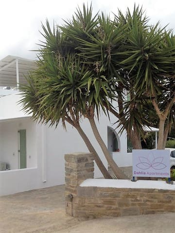 APARTMENT FOR 4 PERSONS-DAHLIA APARTMENTS - Aliki - Appartement