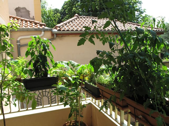 1 or 2 bedrooms in a nice and quiet neighborhood - Lyon - Apartemen