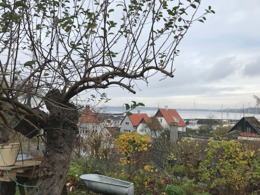 View over the harbour of Roskilde and Roskilde Fjord from the garden