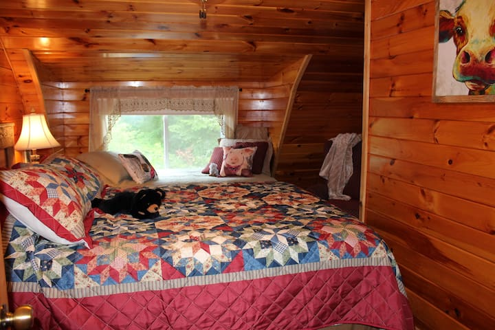 Queen and twin bed in second bedroom