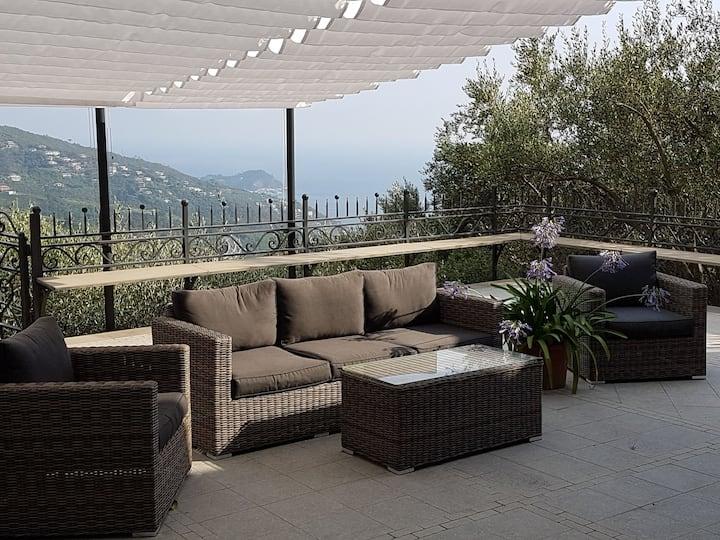 Borgo Guenna CITRA 010028-LT-0319