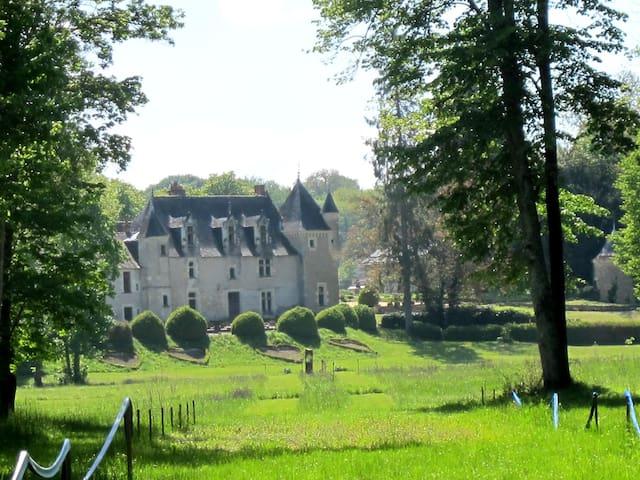 Chambre avec vue sur le château d'Azay Le Rideau