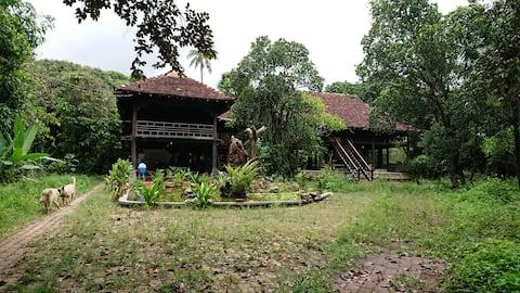 Vuon Thu Guest House Garden