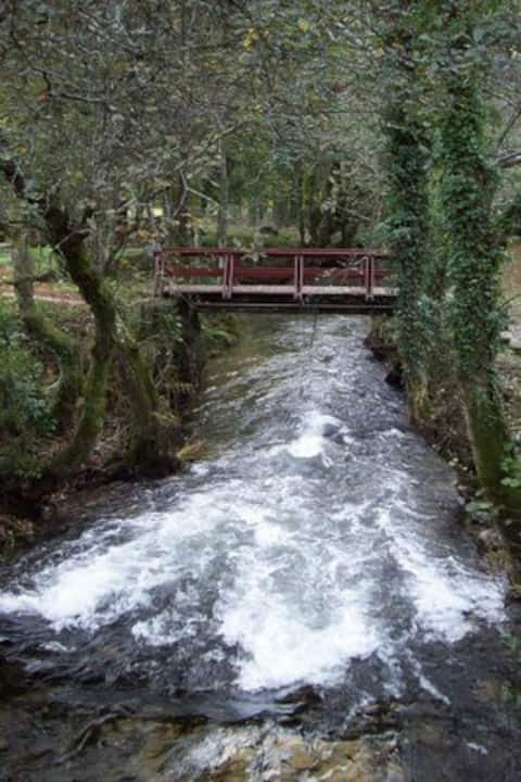 Piso en Cuntis (Villa Termal)