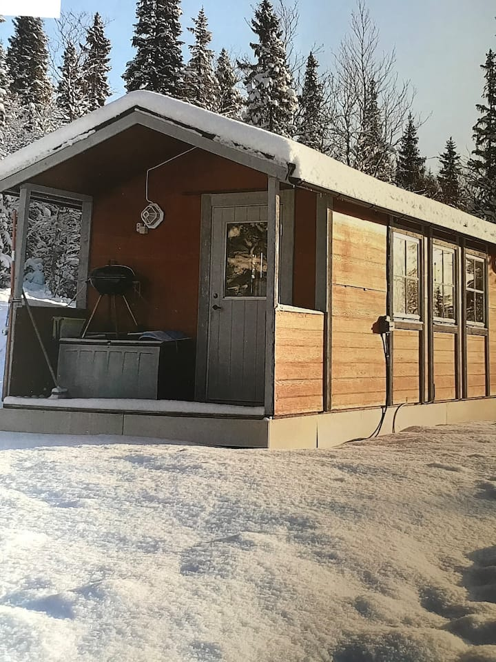 Mysig stuga med en otrolig utsikt! Ski in/out!