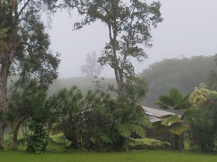 Charming Rainforest Cottage