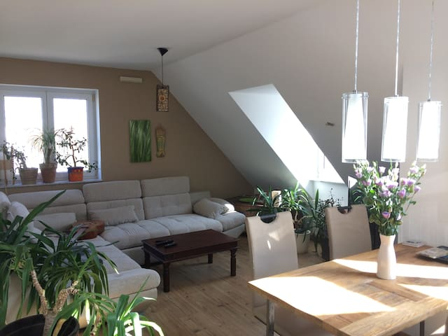 Bed & Breakfast - Mainz - Bed & Breakfast