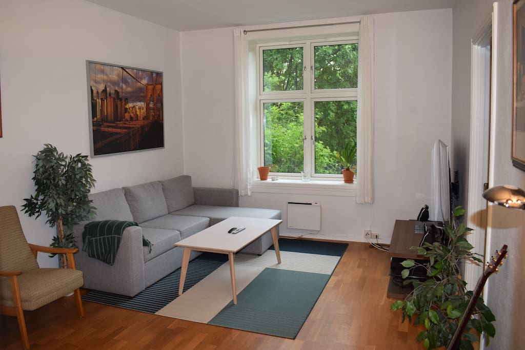"""Large livingroom, with fireplace, 60"""" UHD TV and sleeping couch"""
