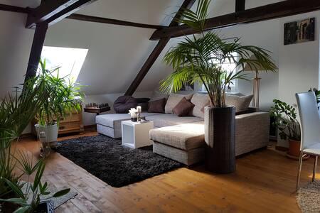 Uriges Dachgeschoss im Bauernhaus