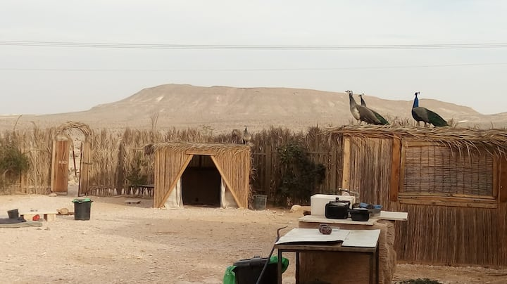 The Circle Camp (Hama'agal)