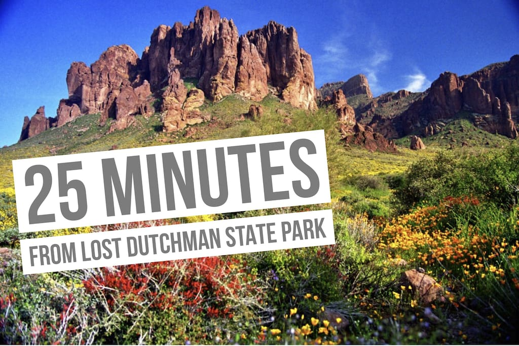If you are in for a Gorgeous view, be sure to check out Lost Dutchman State Park.   Famous western movies have filmed in this area for its western look and cowboy history.