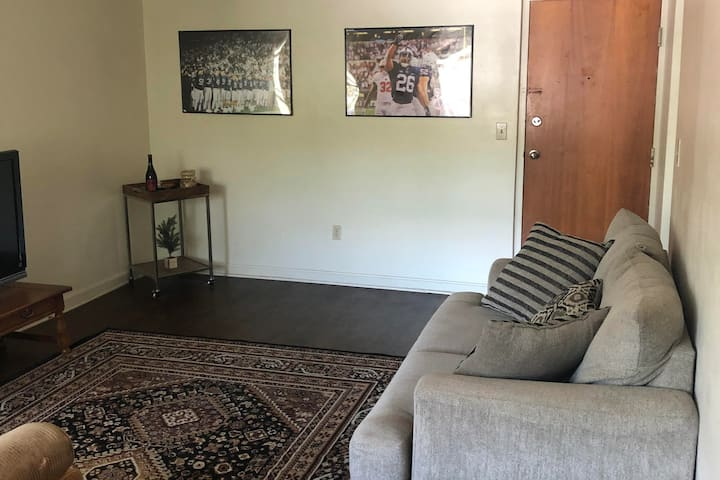 CLEAN, SPACIOUS DOWNTOWN STATE COLLEGE APARTMENT