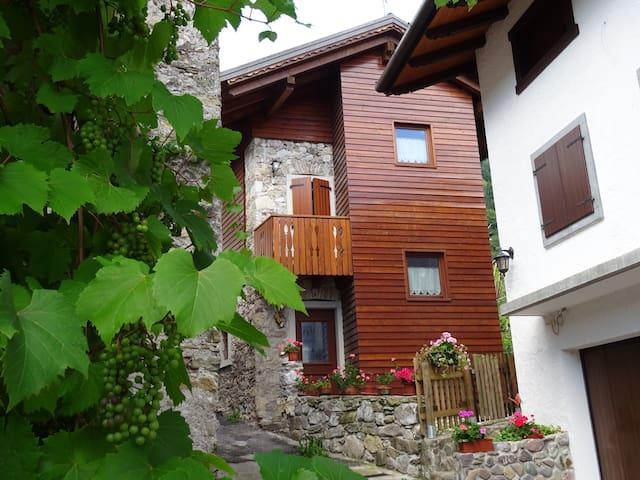Edificio rurale tipico della montagna carnica