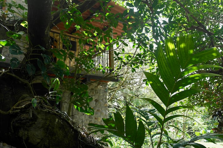 Casa Di Pietra (Room 3)